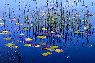 Lilies of the Pond 1,5m Panorama by Peter Lik - 0