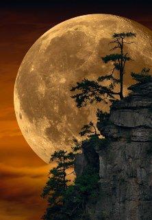 Moonlit Dreams 2018 Panorama by Peter Lik
