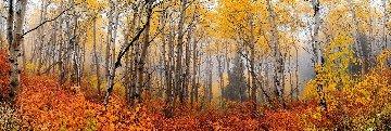 Autumn Mist Panorama by Peter Lik