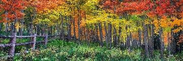 Artist Point Panorama - Peter Lik