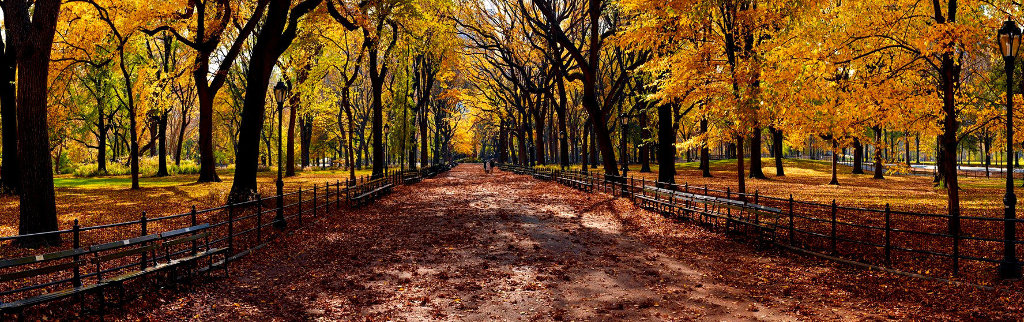 Central Park Photography by Peter Lik
