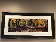 Central Park 1.5M Huge! Panorama by Peter Lik - 1