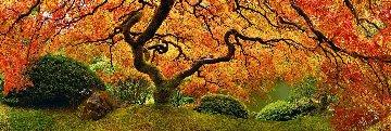 Tree of Zen 1.5M Huge! Panorama - Peter Lik