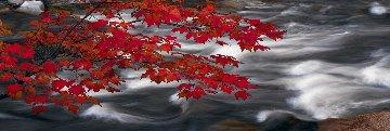 River of Zen 1.5M Huge! Panorama - Peter Lik