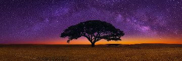 Celestial Dreams Panorama - Peter Lik
