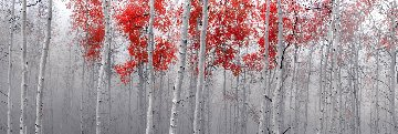Scarlett Moods 2M Huge Panorama - Peter Lik