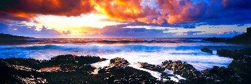 Genesis 1.5M Huge!! Panorama - Peter Lik