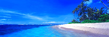 Island Oasis Panorama - Peter Lik