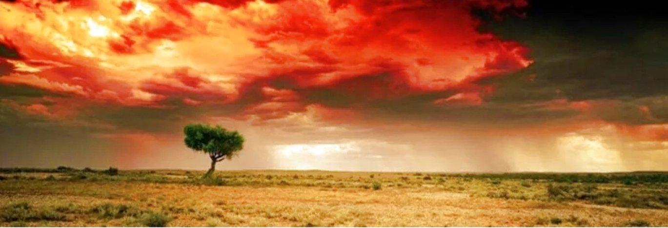 Dreamland 1.5M<br />Huge Panorama by Peter Lik