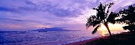 Island Escape Panorama by Peter Lik - 0