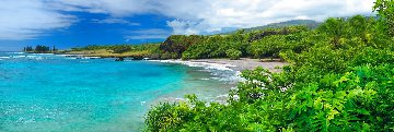 Hawaiian Dream Epic Super Huge Panorama - Peter Lik