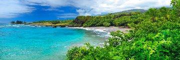 Hawaiian Dream Epic Super Huge  Panorama - Peter Lik