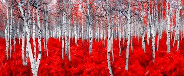 Scarlet Moods 1.5M  Huge Panorama - Peter Lik