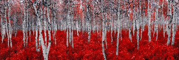 Rouge 1,5M Huge Panorama - Peter Lik