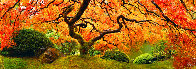 Tree of Zen Panorama by Peter Lik - 0