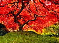 Tree of Life 1.5m Panorama by Peter Lik - 0