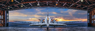 First Flight 1.5M  Huge Panorama - Peter Lik