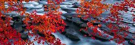 Silent Reflection 2M Super Huge Panorama by Peter Lik - 0