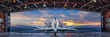 First Flight 1.5M Huge Panorama - Peter Lik