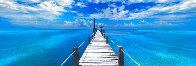 Beyond Paradise (Key West) Huge 2M Panorama by Peter Lik - 0