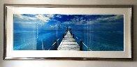 Beyond Paradise (Key West) Huge 2M Panorama by Peter Lik - 9