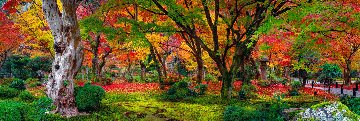 Autumn Jewel 1.5M Huge Panorama - Peter Lik