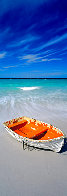 Shipwrecked 1.5M Huge Panorama by Peter Lik - 0
