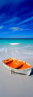 Shipwrecked 1.5M Huge Panorama - Peter Lik