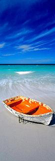 Shipwrecked 2M  Huge  Panorama - Peter Lik