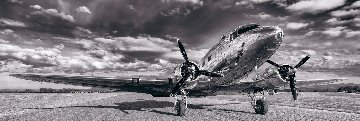 Aviator 110 inches Huge Epic!   Panorama - Peter Lik