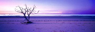 Solitude 1.5M Huge Panorama - Peter Lik