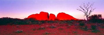 Ancient Earth 1.5M Super Huge Panorama - Peter Lik