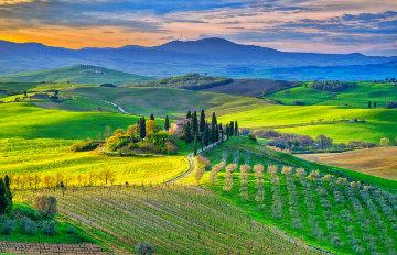 Bella Vista 1.5M Huge   Tuscany Panorama - Peter Lik