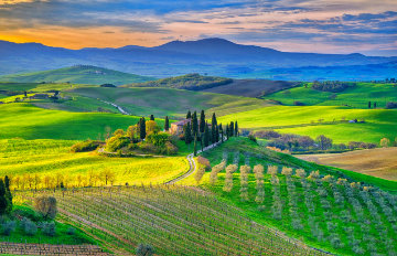 Bella Vista 1.5M  Super Huge   Tuscany Panorama - Peter Lik