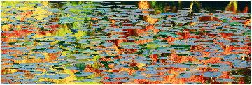 Autumn Impressions 1.5M Huge Panorama - Peter Lik