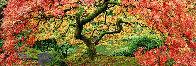 Autumn Spirit   1.5M  Panorama by Peter Lik - 0