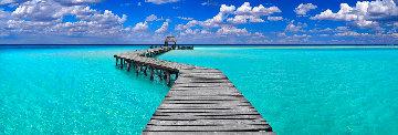 Island Dreams 2M Huge Panorama - Peter Lik