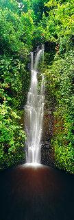 Hana Falls (Maui) Panorama - Peter Lik