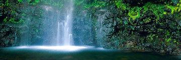 Sacred Falls 1.5 M Huge Panorama - Peter Lik