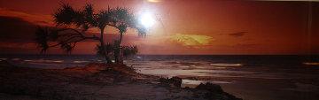 Pandanus Twilight (Frazier Island) (small edition) 1.5M Huge Panorama - Peter Lik