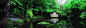 Romantic Hut (small edition) Panorama by Peter Lik