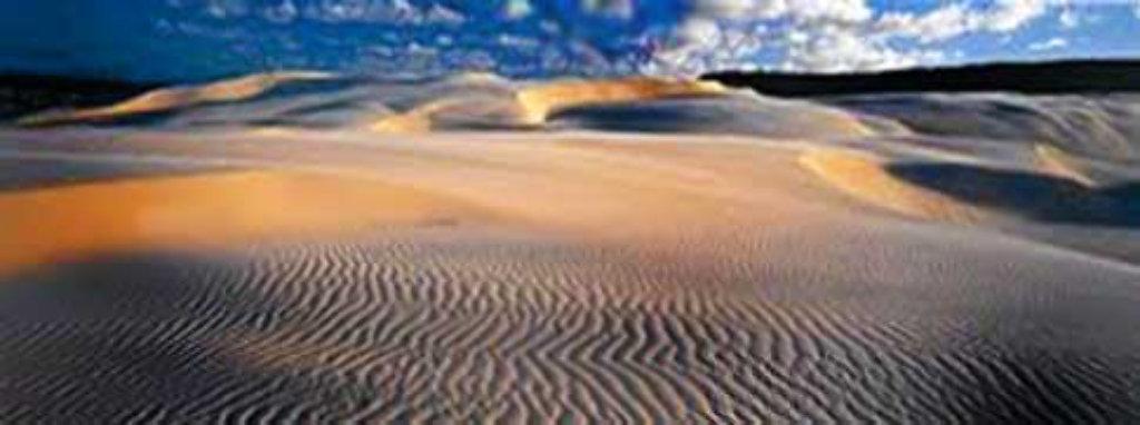 Velvet Dunes Frazier Island (Australia) Panorama by Peter Lik