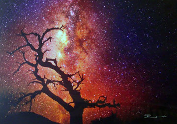 Tree of the Universe (Mauna Kea, The Big Island, Hawaii) 1.5M Huge Panorama - Peter Lik