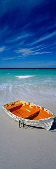Shipwrecked AP Panorama by Peter Lik