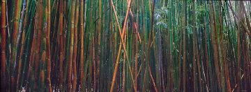 Bamboo (Pipiwai Trail, Hana, Hawaii) Panorama by Peter Lik