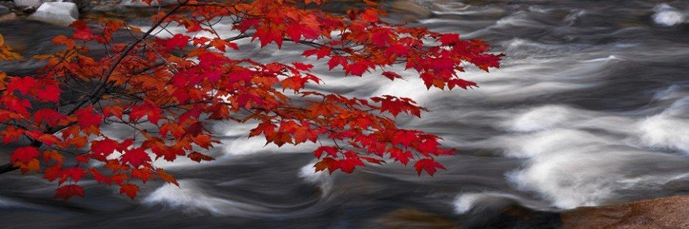 River of Zen (Telluride, Colorado) 1.5M Huge Panorama by Peter Lik