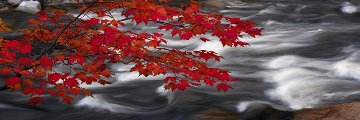 River of Zen (Telluride, Colorado) Panorama by Peter Lik
