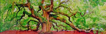 Tree of Hope Panorama - Peter Lik