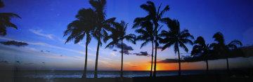 Waikiki Palms, Hawaii Panorama by Peter Lik