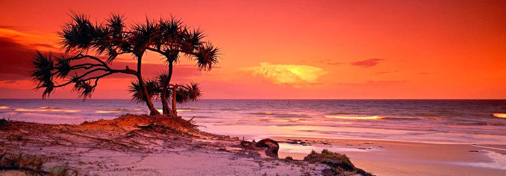 Pandanus Twilight - Frazier Island Panorama by Peter Lik